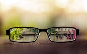 стол, очки, линзы, забор, листья, вазоны, растения