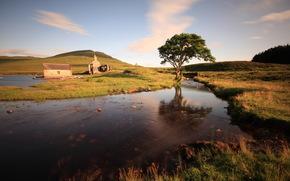 river, tree, ruins, landscape
