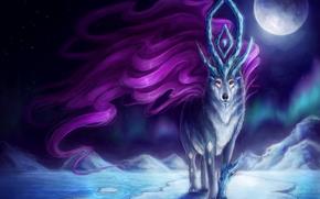 сказочный, 狼, 魔术