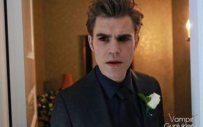 Paul Wesley, Stephen, The Vampire Diaries