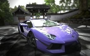 Lamborghini, aventador, purple, Lamborghini