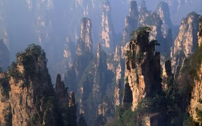 Mountains, China, forest