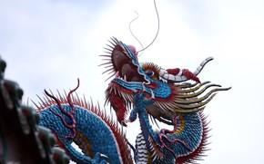 dragon, China, color