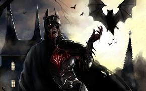 Batman, chauve-souris, structure