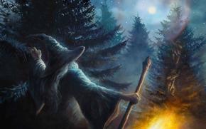 Hobbit, Andata e ritorno, un viaggio inaspettato, Bosco Atro, Bosco Atro, Gandalf, mago, Gnomi, alberi, Alberi, personale, fuoco, foresta, luna, fanart, Fantasia