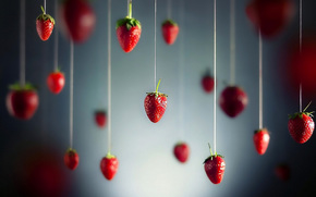 strawberry, Berries, thread