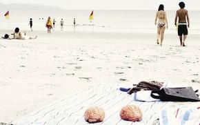 estate, spiaggia, cervello