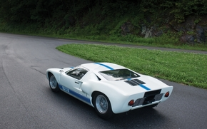 ford, racing car, white, back view, rotation, grass, forest, ford