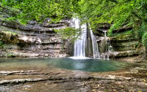cascata, foresta, alberi, ramo, verdura, fogliame, acqua, pietre