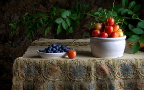 cherry, blueberries, Berries, still life, table, tablecloth, branch