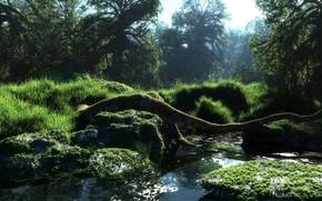 Art, Nature, fort, rivire, petite rivire, enregistrer, eau, ensoleill, mousse