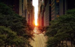 街道, 道路, 机械, 太阳, 城市, 树, 叶子, 建筑