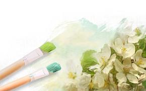 рисунок, кисти, цветы