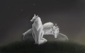 princess, Mononoke, Wolves, dawn, White, sleep, wallpaper, Miadzaki, anime