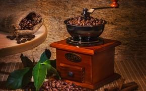 coffee, grain, cinnamon, leaves, pouch, table, coffee mill
