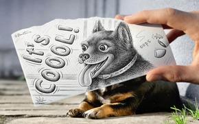 chien, dessin, inscription, main, animal