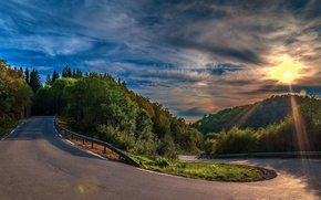 cielo, sol, carretera, Los rboles
