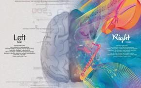 cervello, mente, creativo, mente, Emisfero, creazione, logica, pensiero, giro, materia grigia, matematica, scienza, arte, destra, Sinistra, vernici