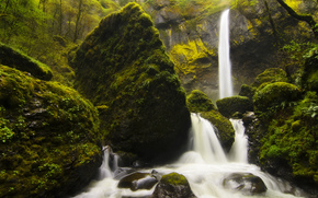 Nature, fort, noyaux, mousse, herbe, cascade, rivire