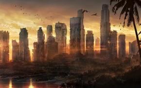 Art, Singapore, ruins, postapokaliptika, city, devastation, building, Palms, coast, sea, Birds, Parrots, sunset