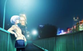 anime, Chaos Top, girl, lights, bridge, home, city, lights, schoolgirl