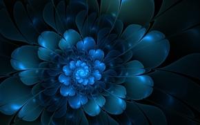 flower, Petals, Vectors, abstraction
