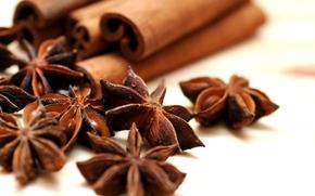 anise, cinnamon, Spices