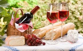 picnic, cestino, fogliame, tovagliolo, formaggio, uva, grappolo, baguette, vino, calici, tovaglia, appetitoso
