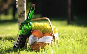 cestino, tovagliolo, pesche, uva, picnic, erba, vino, rosso, betulla, bokeh
