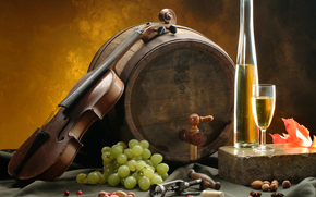 barrel, grapes, Nuts, wine, White, goblet, corkscrew, list, tablecloth, violin