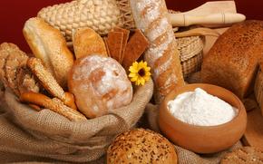 корзины, хлеб, булка, батон, мука, цветок