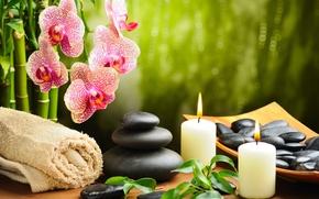 камни, черные, массажные, спа, цветок, орхидея, бамбук, свечи, полотенце