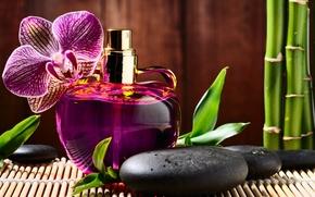 парфюм, духи, флакон, цветок, орхидея, камни, черные, базальтовые, массажные, спа, бамбук