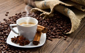 coffee, grain, cup, anise, cinnamon, Spices