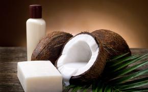 кокос, мякоть, молоко, ветка, мыло, стол, пузырёк