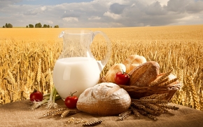 молоко, кувшин, хлеб, булочки, корзина, помидоры, лук, пшеница, поле, небо