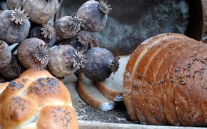 хлеб, ломти, зерно, мак, тмин, стол