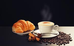 saucer, cup, cappuccino, scoop, star anise, cinnamon, grain, foam, croissant