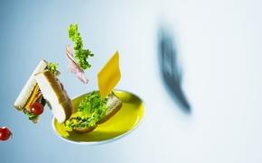 тарелка, полёт, хлеб, салат, помидоры, ветчина, сыр, тень