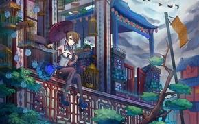 арт, девушка, сидя, зонт, зонтик, веер, клетки, перила, птицы, уж, змея, балкон, дома