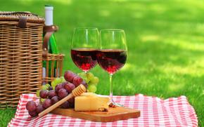 picnic, natura, erba, cestino, tovagliolo, calici, bottiglia, vino, rosso, uva, formaggio