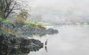 Art, nature, lake, bird, heron, coast, stones, Trees