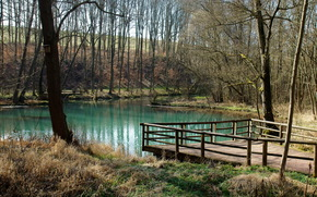 озеро, мостик, пруд, скворечник