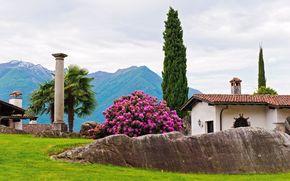 park, dom, drzew, kolumna, palma, cyprys, rododendron, krzak, Gry, kamienie