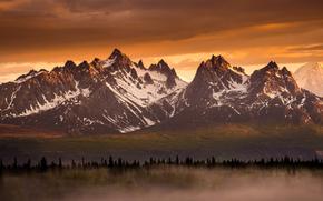 Gebirge, Wald, Licht, Nebel