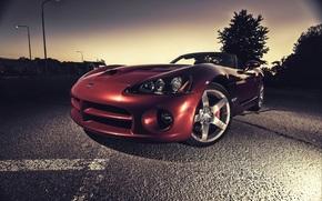 Dodge, Viper, red, asphalt, Dodge