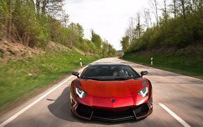 Lamborghini Aventador Mansory, movimento, foresta, Lamborghini