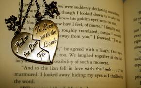 книга, подвеска, обои, разное, медальон, магнит