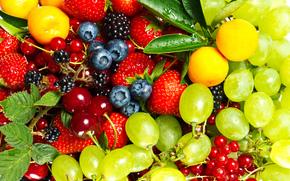 Jagody, truskawki, agrest, winia, porzeczka