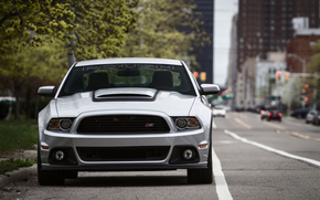 ford, Mustang, sports car, road, city, Trees, Car, megalopolis, ford